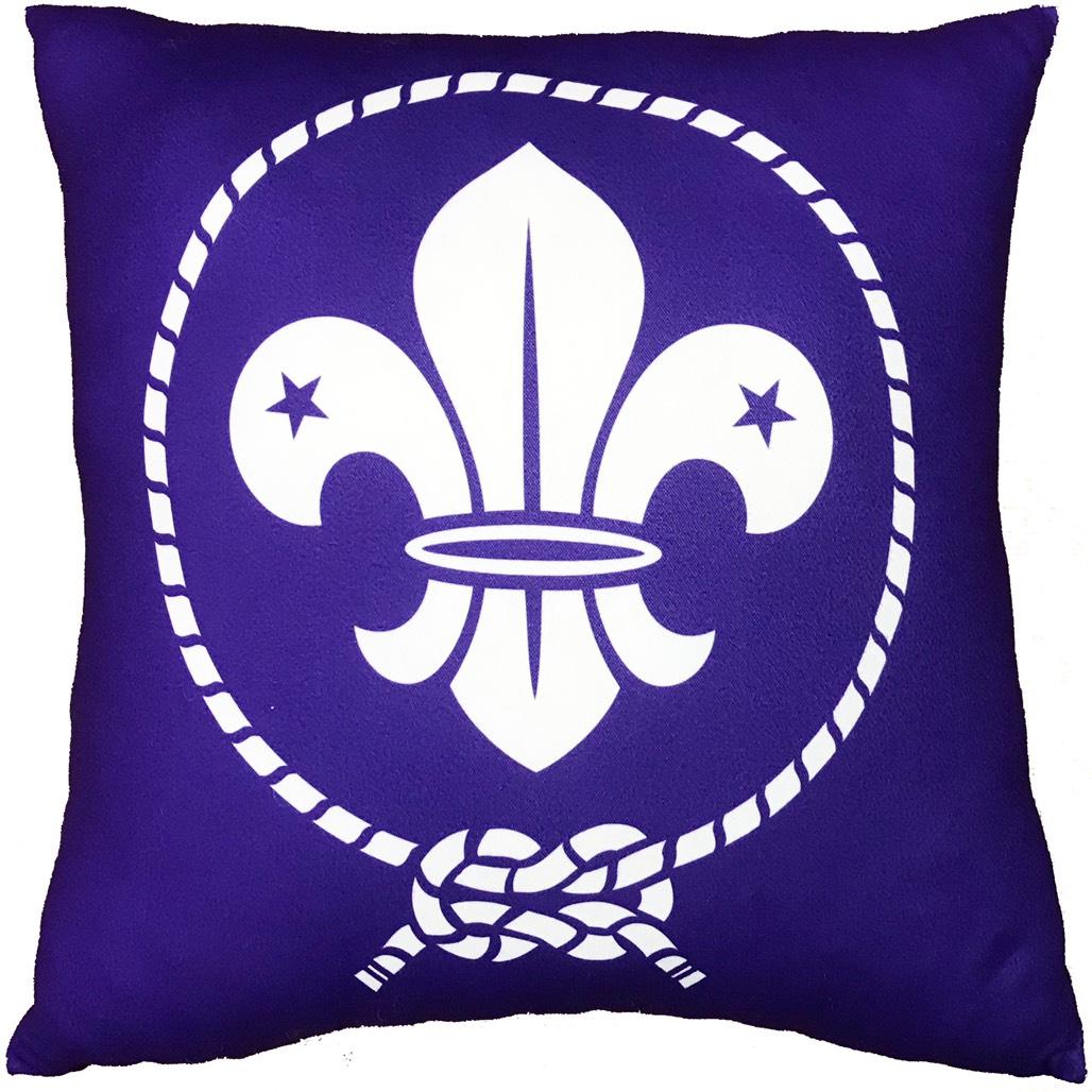 世界徽抱枕
